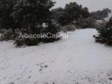 nieve (3)