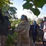 'Reflexiones y Apuntes sobre la Pandemia': la Universidad de la Experiencia retoma sus conferencias este lunes