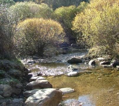 Agua y medioambiente