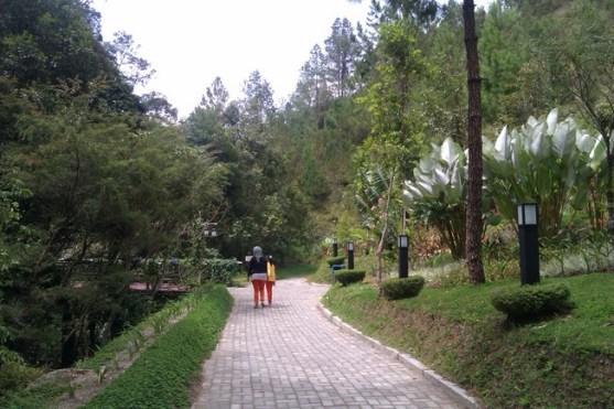 Jalur ke hutan dan mansion