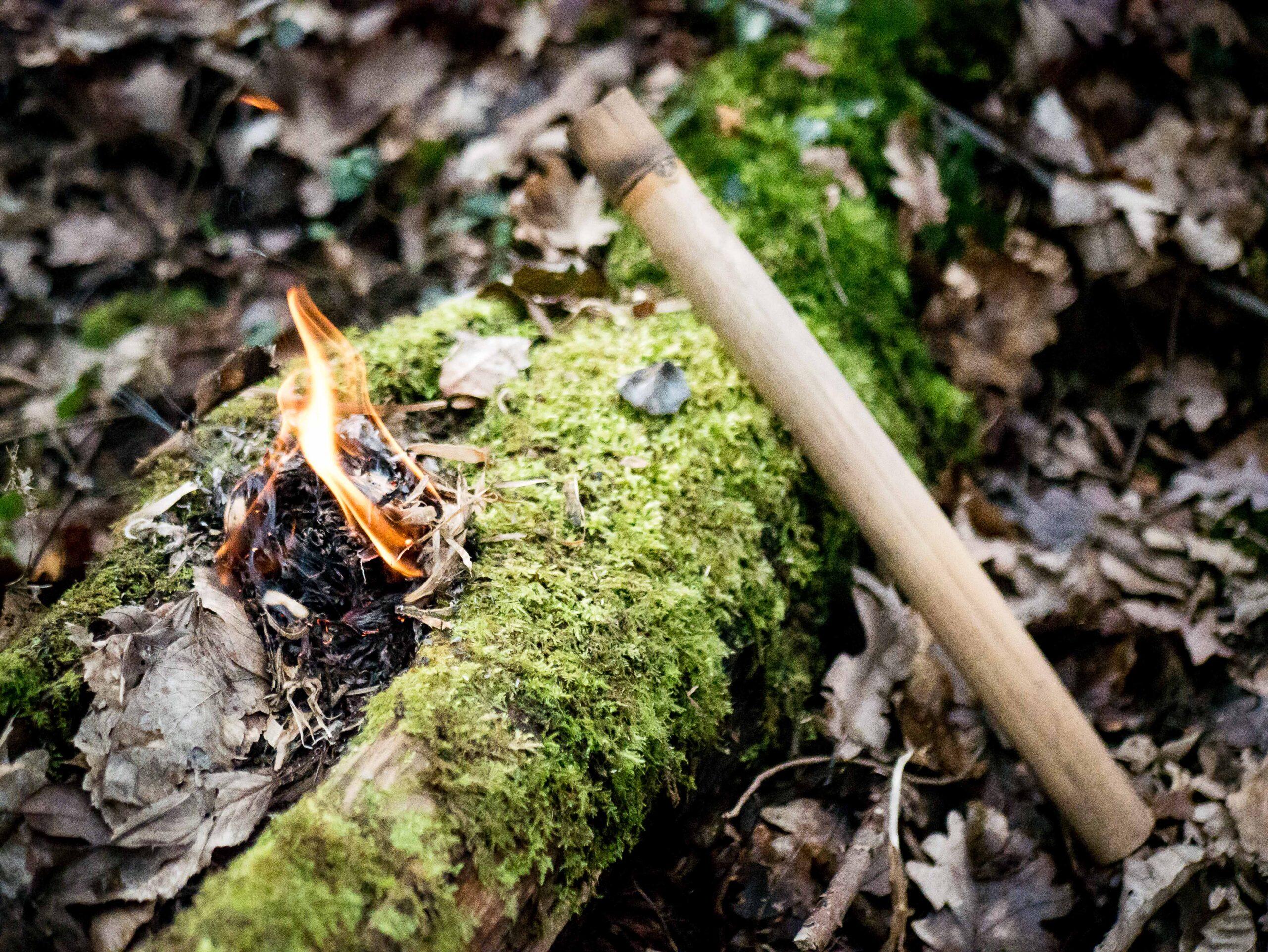 Le bambou-firesteel : une sublime méthode pour allumer un feu