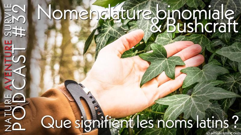 Nomenclature binomiale et Bushcraft – Podcast #32