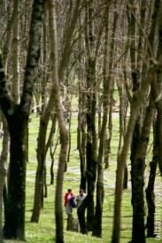 Im grossen Park von Tirana
