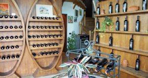 Weinkellerei Çobo bei Berat - albanischer Wein