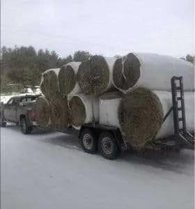Davio Transport - material hauling - Albany, VT
