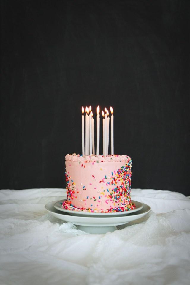 17 Year Old Birthday Cake 24 Homemade Birthday Cake Ideas Easy Recipes For Birthday Cakes