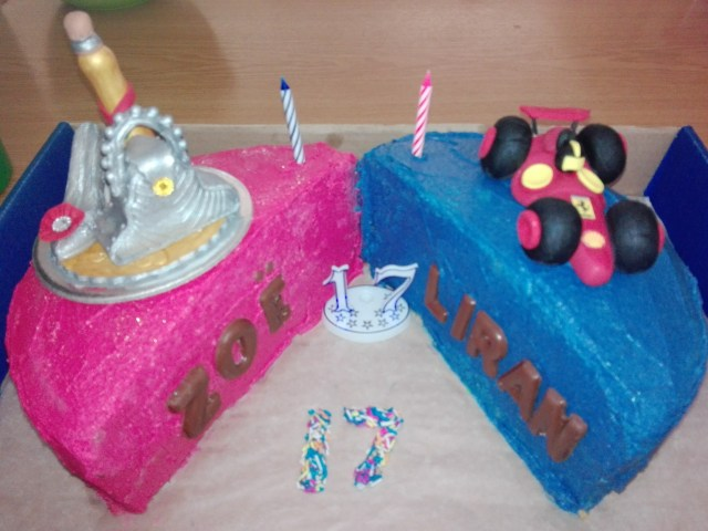 17 Year Old Birthday Cake Twins Archives Listicle
