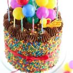 Birthday Cakes The Birthday Cake Sprinkle Bakes