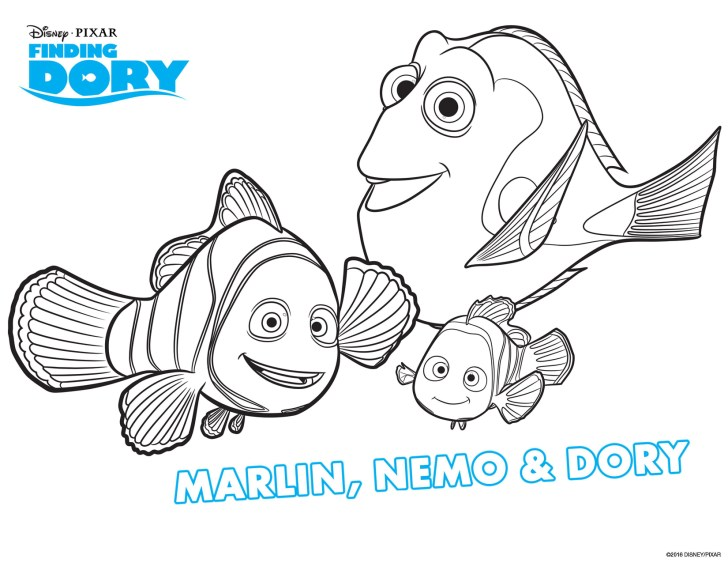 30+ Excellent Picture of Dory Coloring Pages