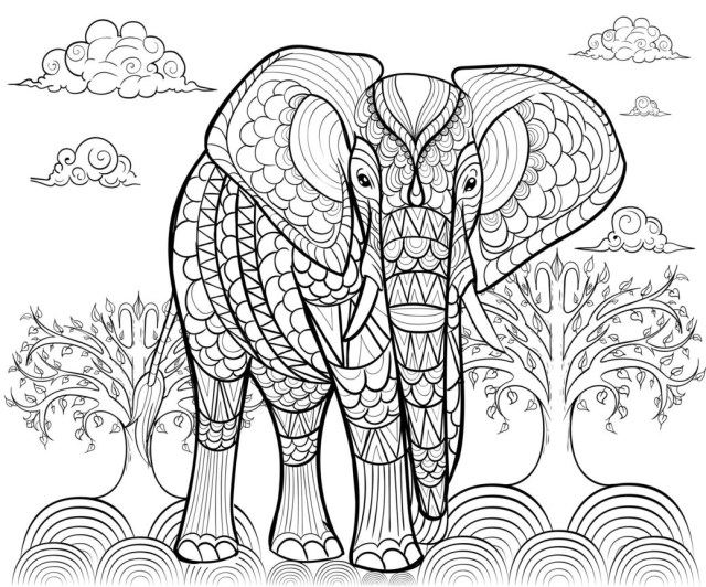 Elephant Adult Coloring Pages Elephant Alfadanz Elephants Adult Coloring Pages Book Good Books For