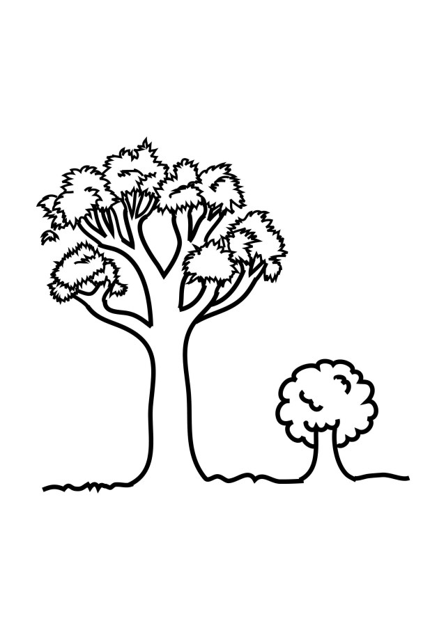 Fall Tree Coloring Pages Fall Tree Coloring Page Free Printable Pages In Ba Boom