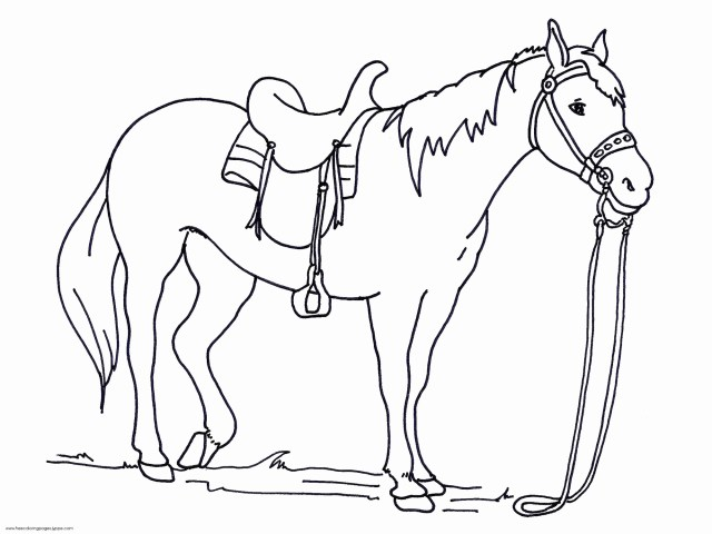 Free Horse Coloring Pages Admirable Ideas Of Free Horse Coloring Pages Turnofthepageco