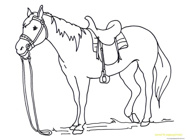 Free Horse Coloring Pages Coloring Pages Free Horseing Pictures Pages Page Mped Horses Save
