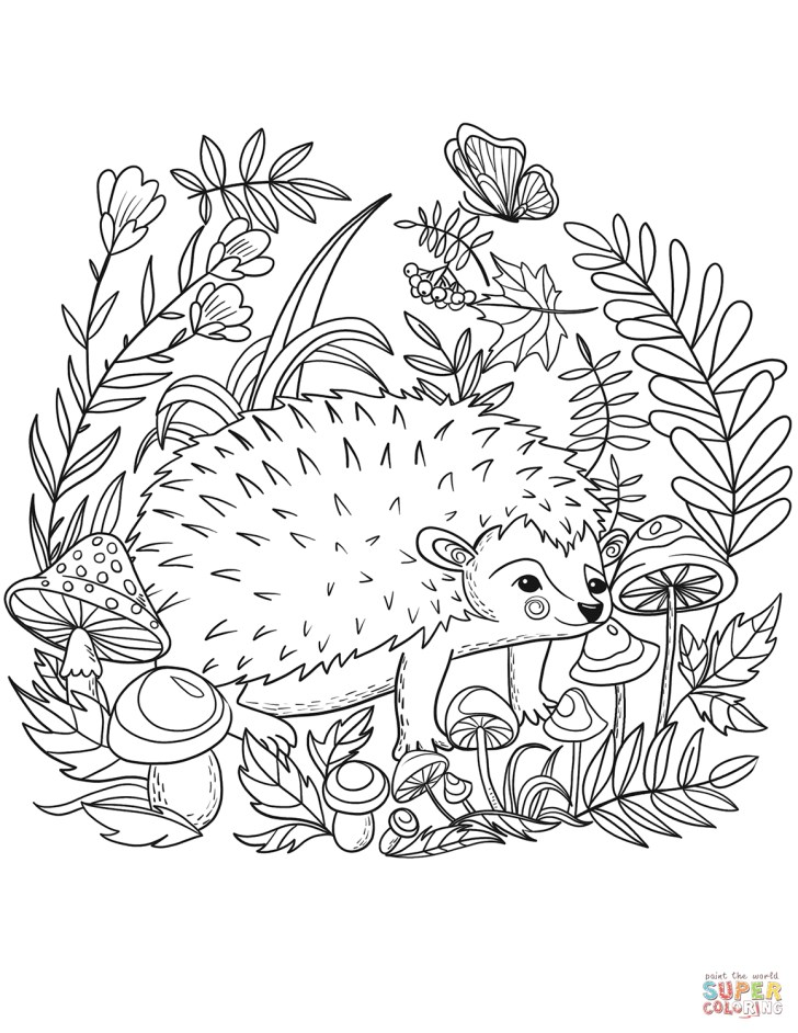 Creative Image of Hedgehog Coloring Page