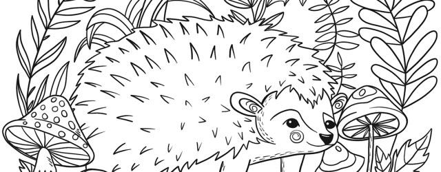 Hedgehog Coloring Page Hedgehog Coloring Page Free Printable Coloring Pages
