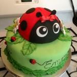Ladybug Birthday Cake Ladybug Birthday Cake Wwwfacebookcakesomethingsweet