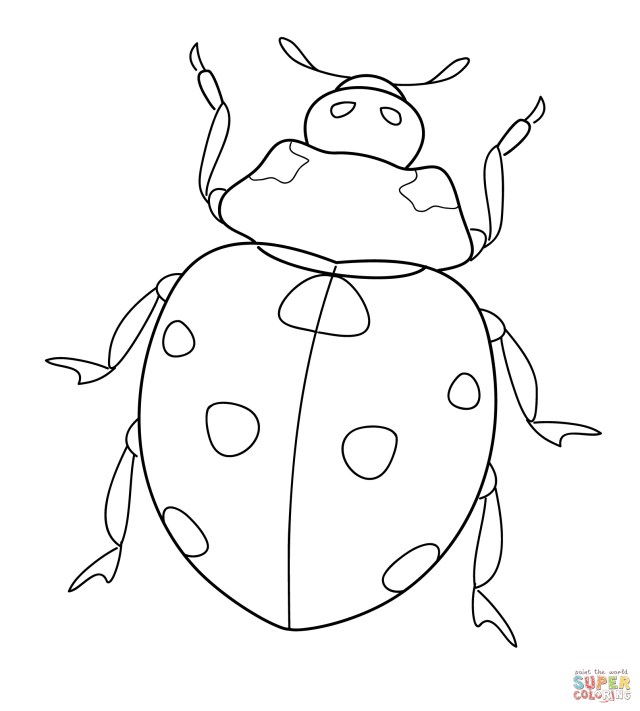 Ladybug Coloring Page Ladybug Coloring Pages Free Coloring Pages