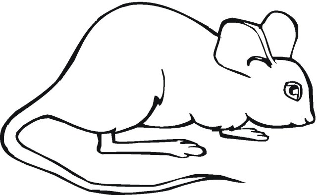 Mouse Coloring Page Mouse Color Page Mice Coloring Pages 8 Futurama