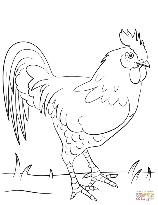 Rooster Coloring Page Rooster Coloring Page Free Printable Coloring Pages