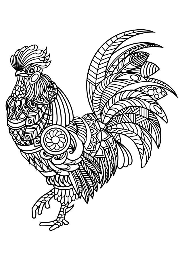 Rooster Coloring Page Rooster Coloring Pages For Adults