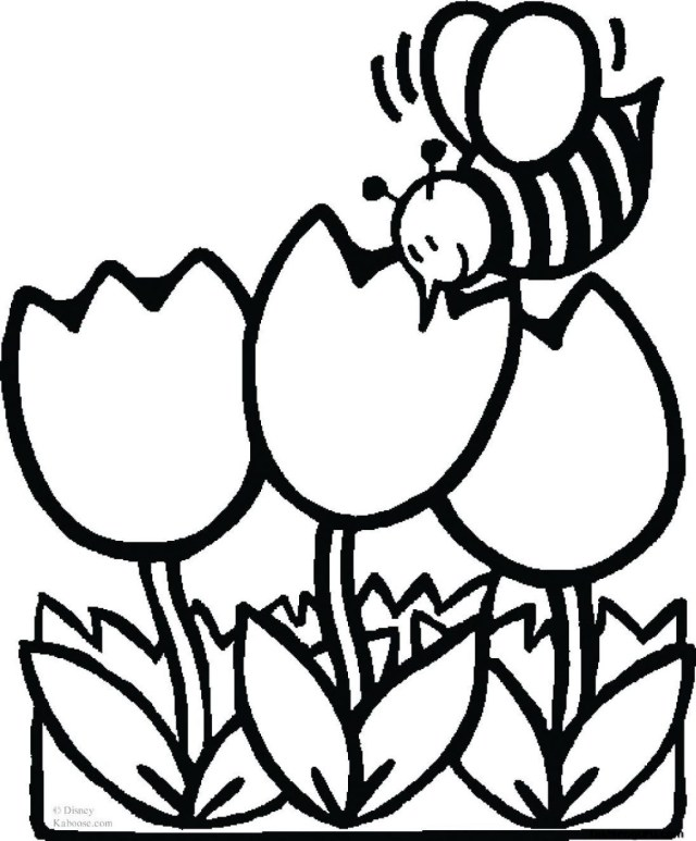 Spring Flowers Coloring Pages Coloring Pages Spring Flowers Coloring Pages Page Happycloudxu Com