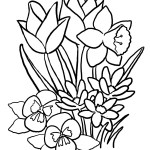 Spring Flowers Coloring Pages Spring Flowers Coloring Pages Flower Outline And Print Diagnostic