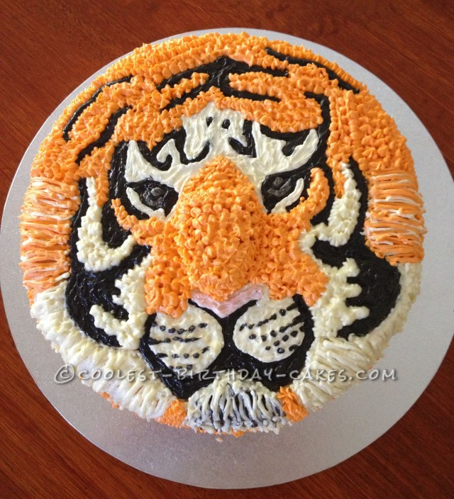 Tiger Birthday Cake Tiger Birthday Cakes