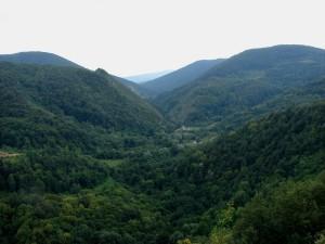Vedere spre Băcâia din Cheile Cibului
