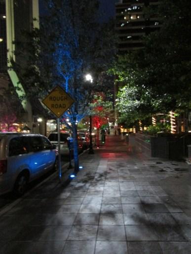 tree lights, all year round.