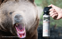 bear spray222.png