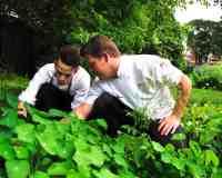 Chefs in the garden-min
