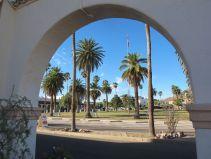 Sunshine & palm trees in southern AZ