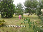 Front yard after Joan