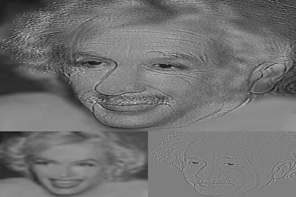 illusione ottica Albert Einstein e Marilyn Monroe