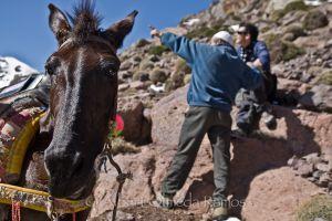 Ibrahim nos explica el camino, Atlas, Marruecos