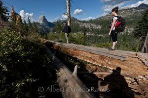 Paseando por Yosemite