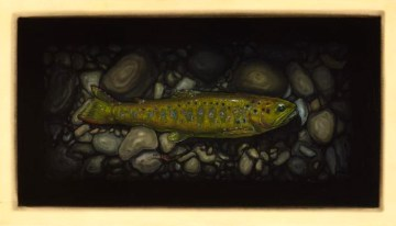 Brown Trout I
