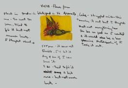 Sketchbook Q 12 - Flower, Agramonte, Cuba