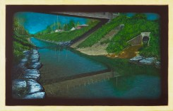Biological Regionalism: Scajaquada Creek, Cheektowaga Park, Cheektowaga, New York, USA