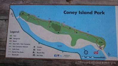 DSC_1003 The Trek across Coney Island