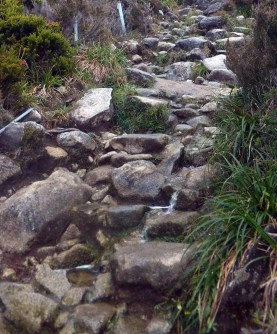 path 5 Expedition to Mount Kinabalu
