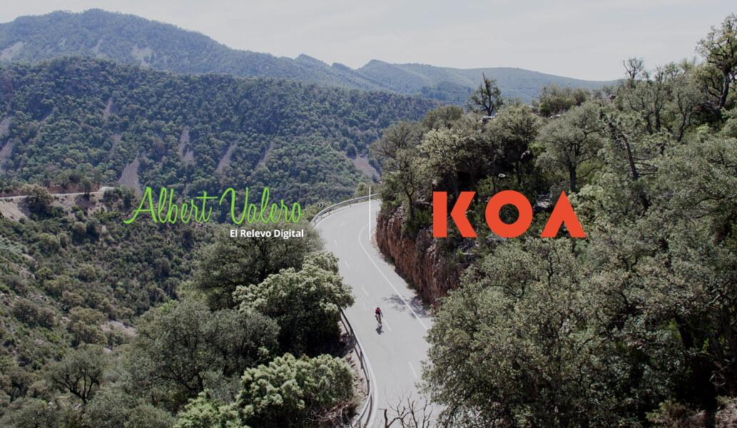Nuevo proyecto: KOA
