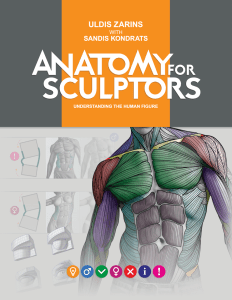 anatomy4sculptors