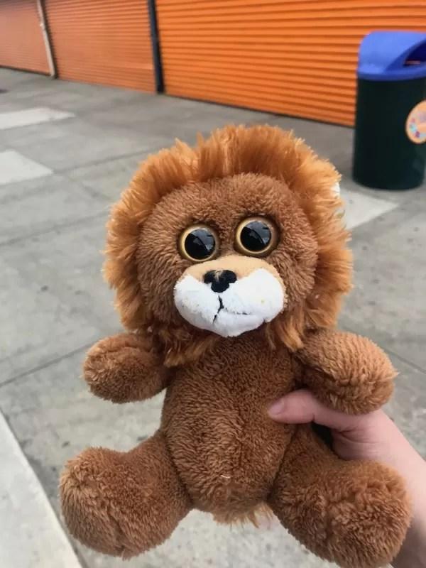 Creepy lion I won at Coney Island