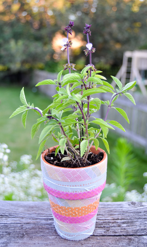 Washi Tape Flowerpot