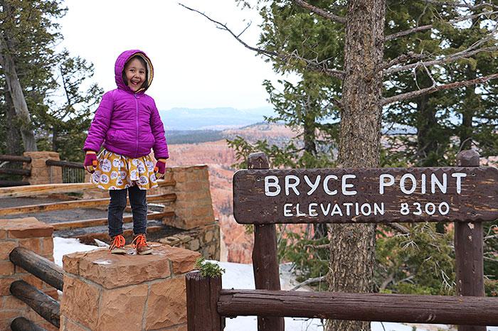 bryce8