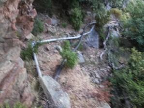 arrosage:acien tuyau galvanisé et nouveau tuyau