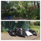 Piles of landscaping debris and trash ready to be picked up