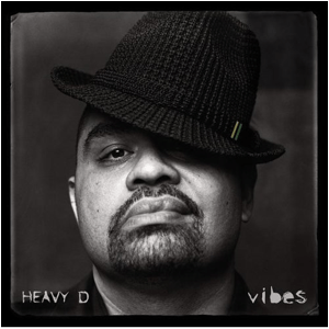Visual Album Review: Heavy D – Vibes