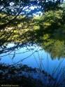 BeFunky_DSC05057.jpg